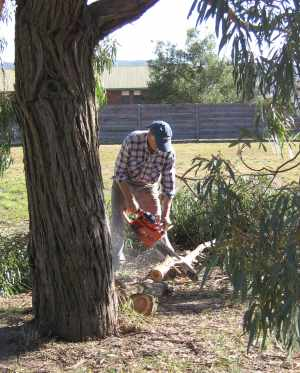 PJ chainsawing