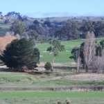 Nearby on the road to Heathcote